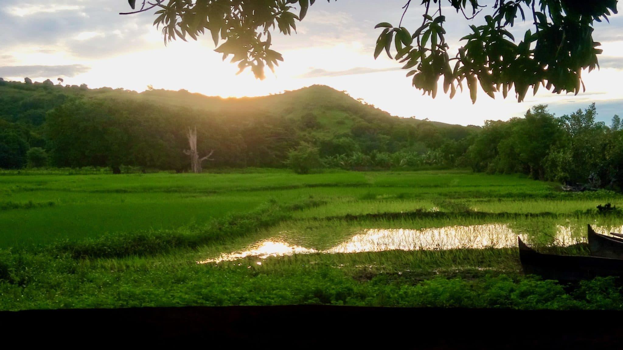 Nature île Radama